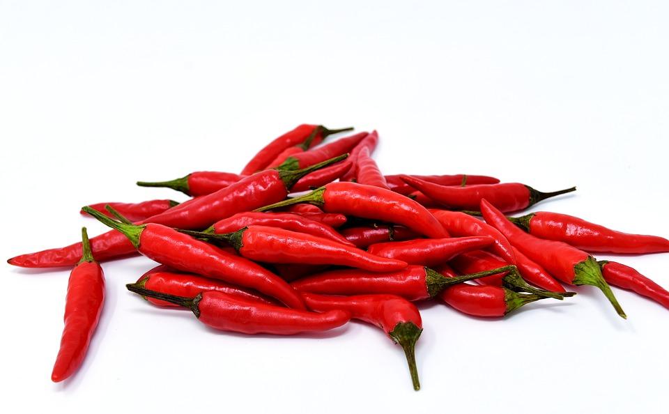 Chili gastro GUEST